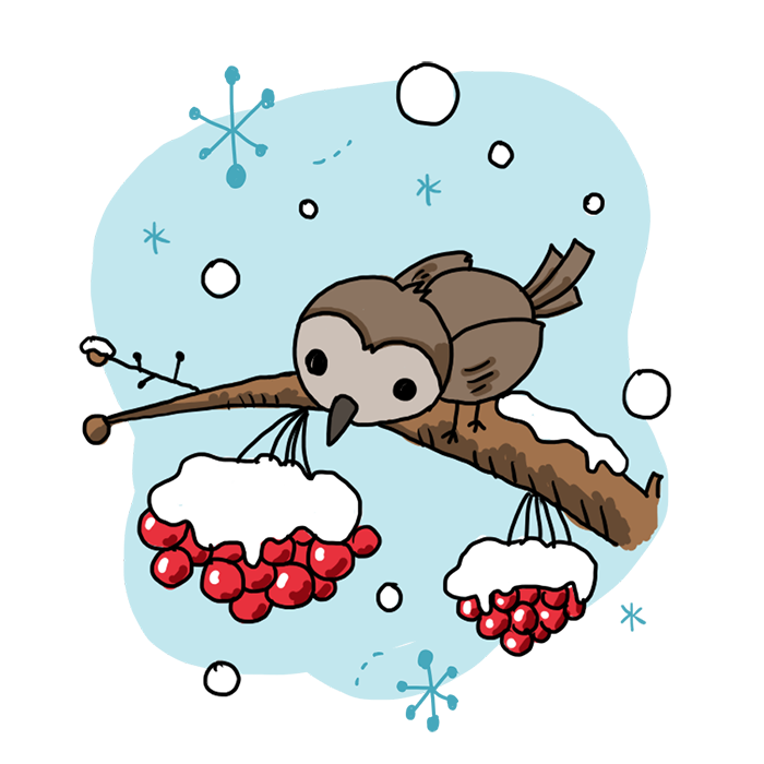 雀 すずめ 冬 雪 ななかまど なおこさんのフリーイラスト 無料素材 フリーイラスト アイコン 無料 イラスト イラスト無料 無料イラスト